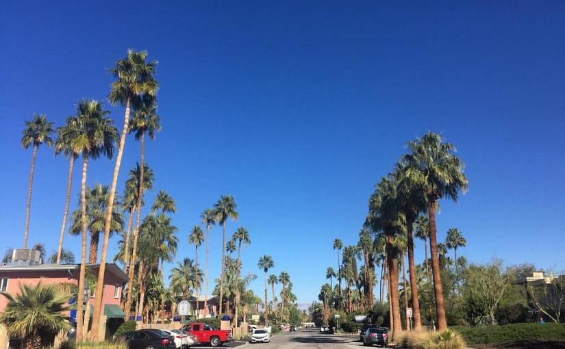 High Desert: Palm Springs,USA